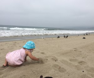 Things To Do With Los Angeles Babies: Visit the Beach
