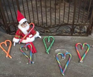 Elf on the Shelf makes candy cane hearts