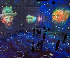 Immersive Van Gogh exhibit Hollywood activity