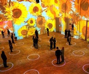 Immersive Van Gogh Exhibit Is Coming To LA: See Van Gogh's Sunflowers 3 stories high