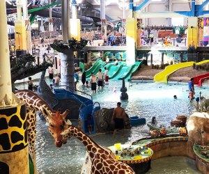 Kalahari's indoor water park has a jungle theme