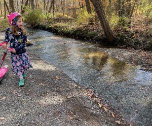 Little girl on the hiking trail at Loantaka Brook Reservation