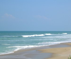 One of the prettiest beaches in New Smyrna Beach is Playalinda Beach.