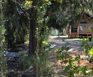 Huttopia Paradise Springs: Discover the Best New Glamping near Los Angeles: a tent with a view