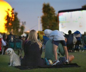 Catch an evening movie at Orange County Great Park. Photo courtesy of City of Irvine
