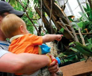 Visiting the birds at the Philadelphia Zoo. Photo courtesy the zoo
