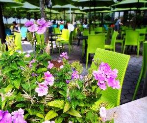Pier i Cafe outdoor dining