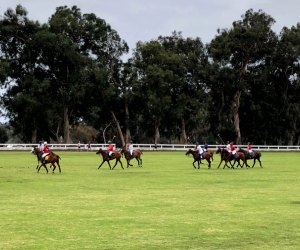 35+ Fall Activities near Los Angeles for Kids: Polo