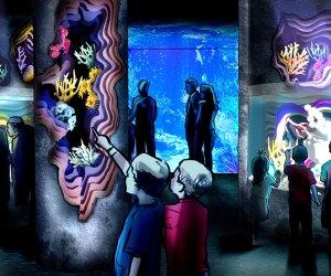 Sea Life aquarium coral reef