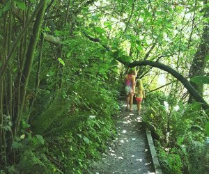 Things To Do in Seattle with Kids: Emerald City
