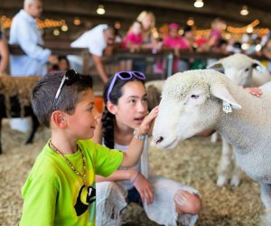 Photo courtesy of Los Angeles County Fair