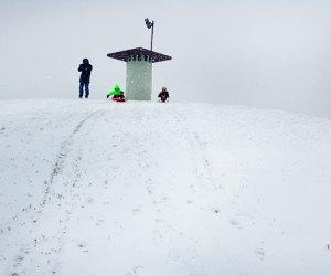 Sled down steep hills at Newbridge Road Park