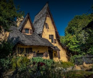 Home Haunts and Amazing Halloween Decorations in Los Angeles: Witch's House