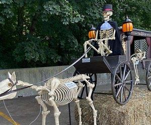 See a skeleton stage coach at Stew Leonards Halloween drive-thru attraction