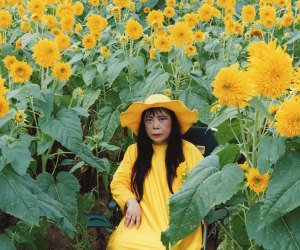 Kusama: Cosmic Nature tells the story of the artist's love for nature