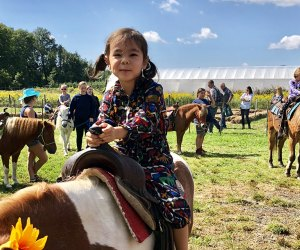 Pony rides are part of the fall farm fun at Terhune Orchards in Princeton. Photo by Janet Bloom