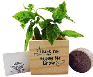 Teacher Appreciation Gifts: Garden gifts