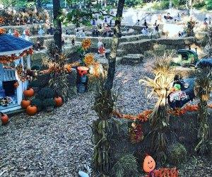 Explore the corn maze at Storybook Land