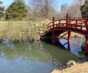Hike across the Red Bridge at Duke Farms
