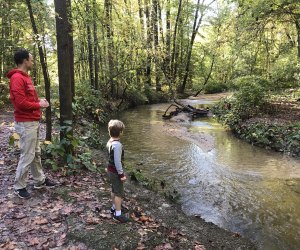 Father and son toss rocks in a creek in the woods