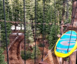 Things To Do with Kids in Lake Tahoe: Tree Top Adventure