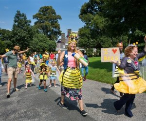 Celebrate bees and honey at Wave Hill's Honey Weekend. Photo by Erics Berger