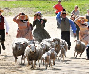 Wool Days fun is afoot this weekend! Photo courtesy of Old Sturbridge Village