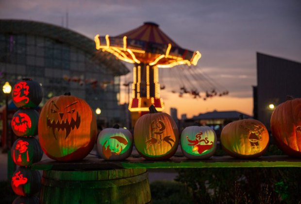 Pumpkins light up Navy Pier this month. Photo  courtesy of Navy Pier