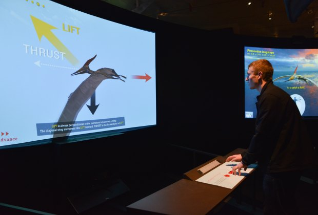 Another cool interactive element: the virtual Wind Tunnel; ©AMNH/D. Finnin