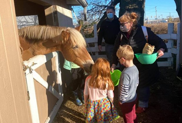 Best Farms for Family Fun and Entertainment in Chicago: kids feeding horse