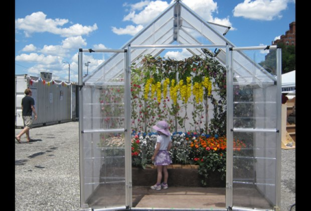 "André Feliciano's Greenhouse filled with colorful ""camera flowers"""
