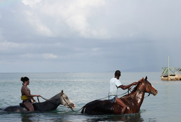 Horseback Swimming