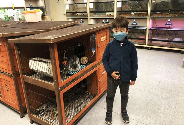 boy in environmental center with animals