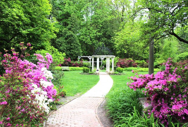 The Azalea Festival at  Sayen Botanical Gardens takes place Sunday, May 12. Photo courtesy of the garden