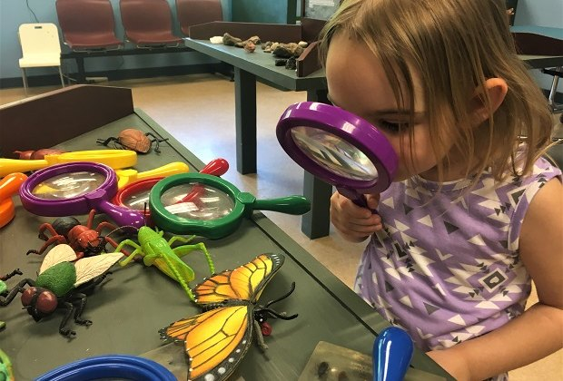You don't have to look far to find fun, indoor learning activities at the Barnes Nature Center.