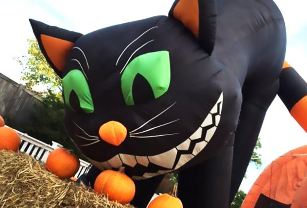 Thrill to Kids Not So Scary Days at Bayville Scream Park. Photo courtesy of the park