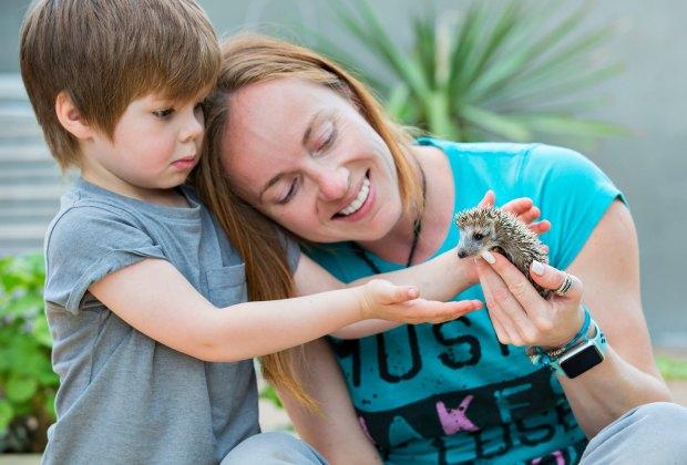 animal petting birthday party hedgehog