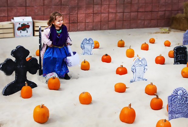 Go pumpkin picking in the sand at Jenkinson's Boo on the Boardwalk. Photo courtesy of Jenkinson's