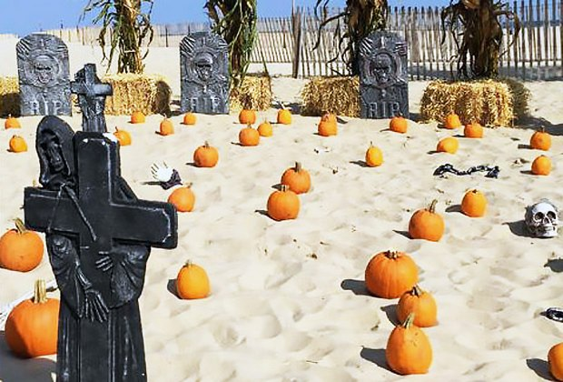 Go pumpkin picking on the beach at Boo on the Boardwalk. Photo courtesy of the event
