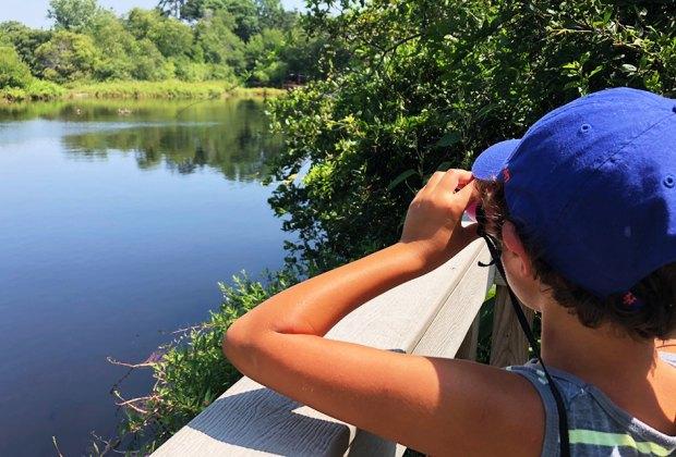 Bring your binoculars and spy some wildlife around the Quogue Wildlife Refuge pond.