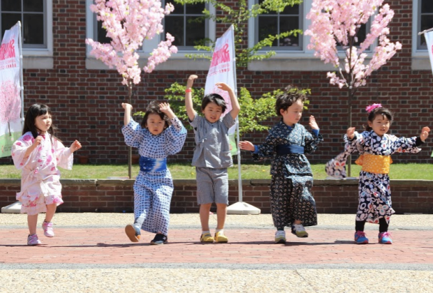 Photo courtesy of Brookline Cherry Blossom Festival