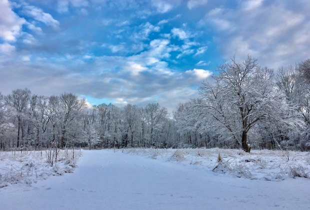 Explore the snow-covered cross-country skiing trails of Caleb Smith State Park