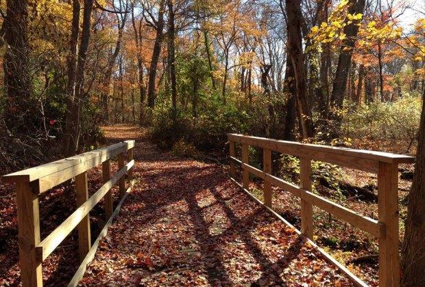 bridge and hiking trail Caleb Smith State Park Preserve