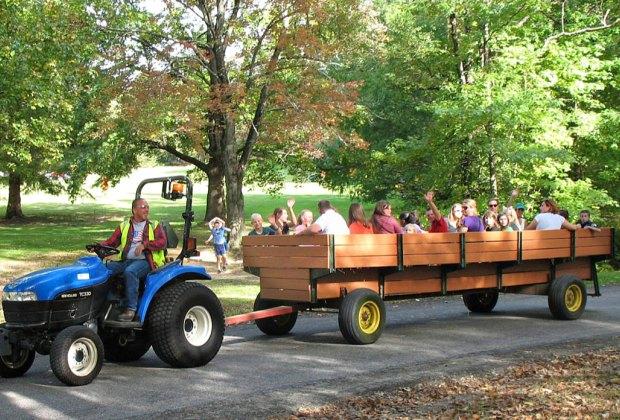 Cheltenham Community Harvest Festival. Photo courtesy Cheltenham Township