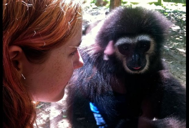 Face to face with the gibbon