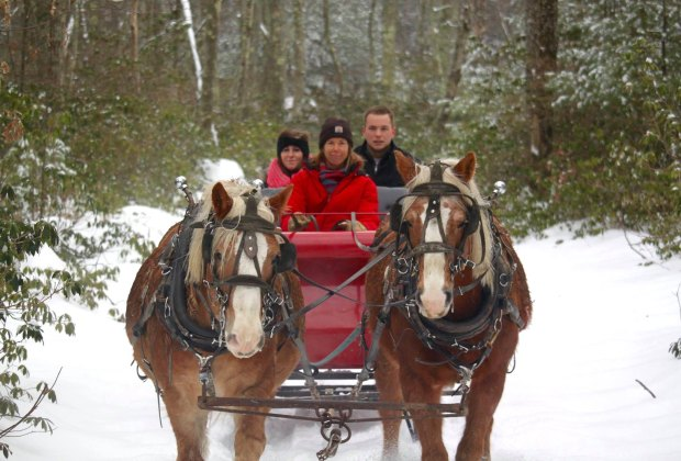 Cornerstone Ranch offers private and group sleigh rides in Princeton. Photo courtesy of Cornerstone Ranch LLC