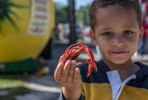 Get ready to get down on some mudbugs./Photo courtesy of Texas Crawfish Festival.