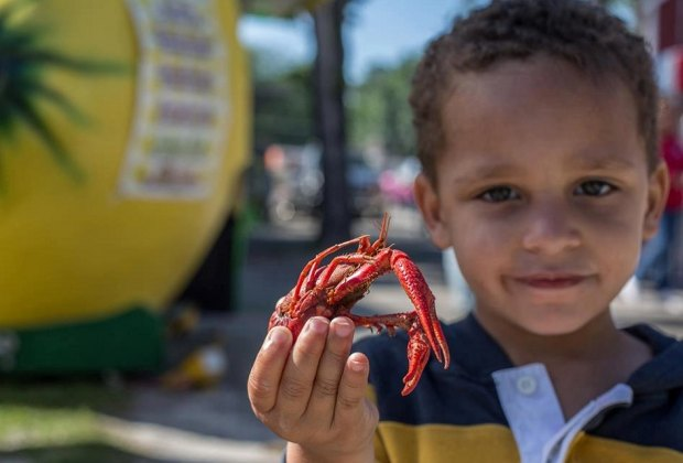 Get crackin' on some mudbugs, listen to live music and play carnival games./Photo courtesy of the Texas Crawfish and Music Festival.