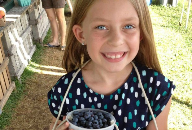 blueberry picking Doe Orchards