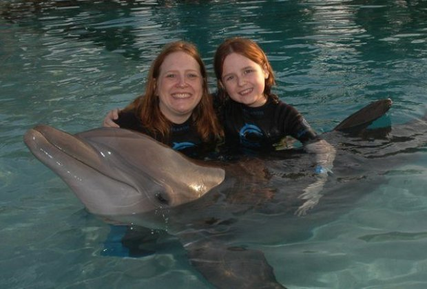 Swim with the dolphins in Dolphin Cove